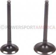 Intake_and_Exhaust_Valve_ _GY6_125cc_1